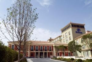 Hotel Hilton Palacio Buena Vista (Toledo)